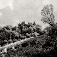 castle Wisell 1