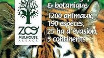 zoo mulhouse.jpg