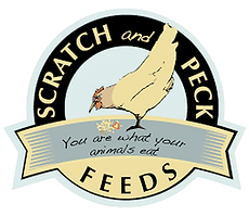 scratch-and-peck-logo
