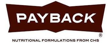 chs payback logo.jpg