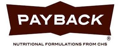 chs-payback-logo