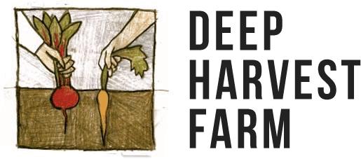 deep-harvest-logo.png