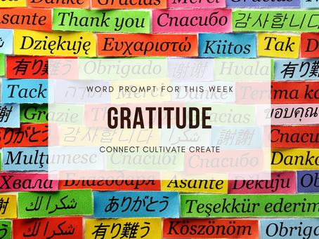 Connect, Cultivate, Create: GRATITUDE