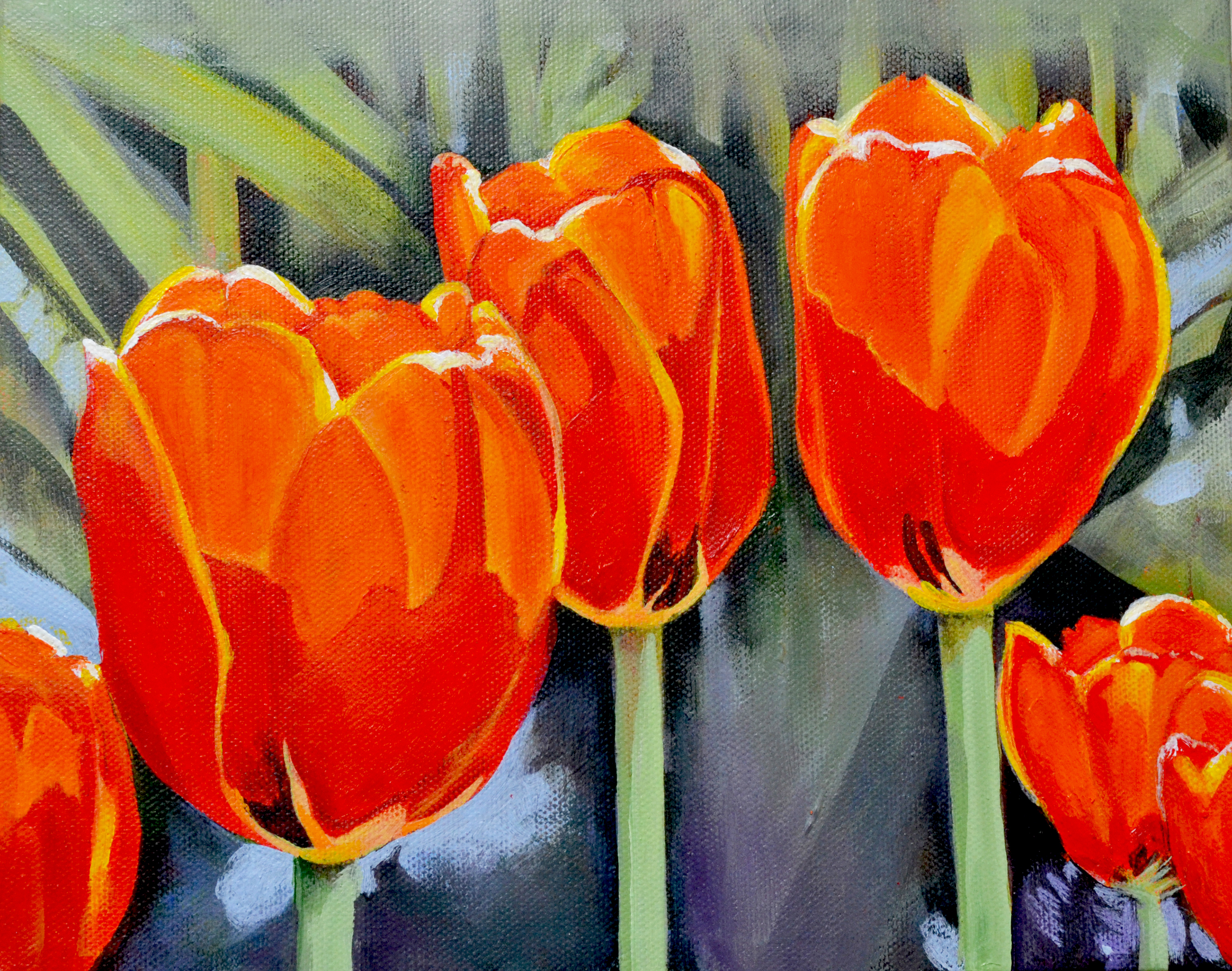 Moment in the Sun - Red Tulips