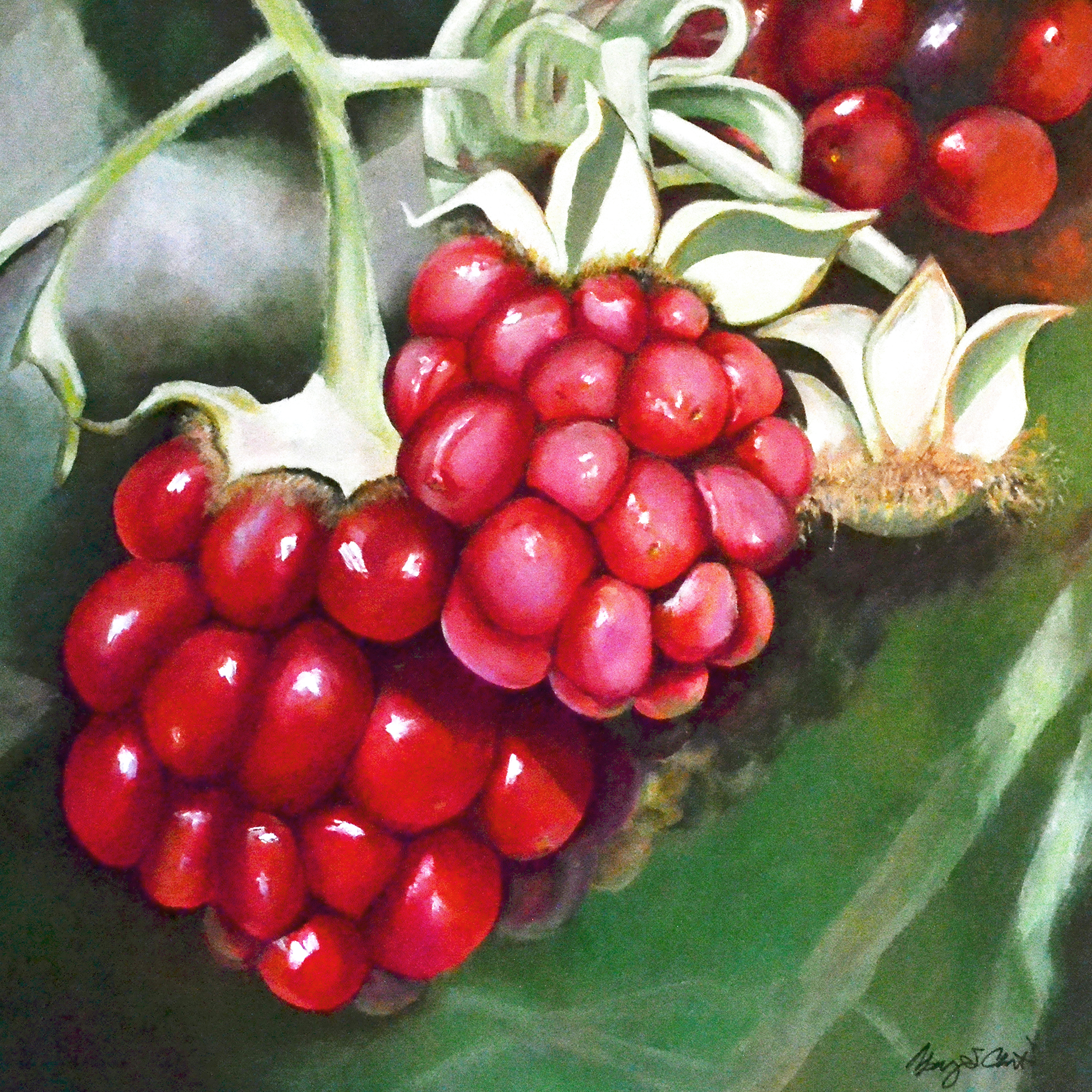 Moment in the Sun - Berries