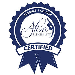 Module 1 Certification Logo.jpg