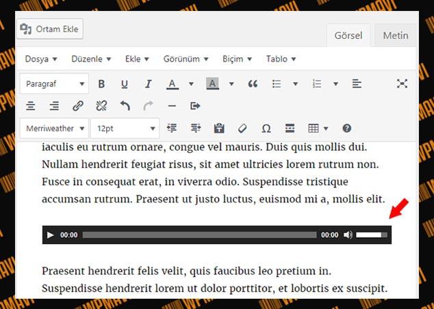 WordPress Yazılara Müzik Ekleme - WordPress Müzik Player