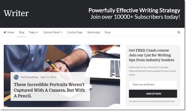 SEO Uyumlu WordPress Temaları - Writer