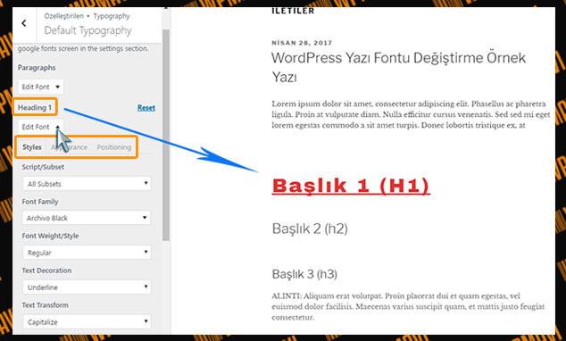 WordPress Yazı Tipi Değiştirme - Eklenti Seçenekleri