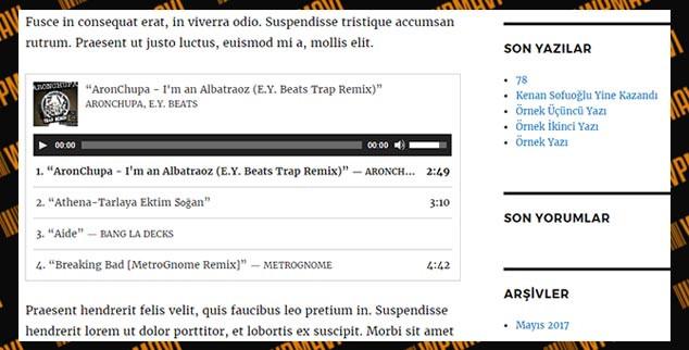 WordPress Müzik Listesi Ekleme - Playlist