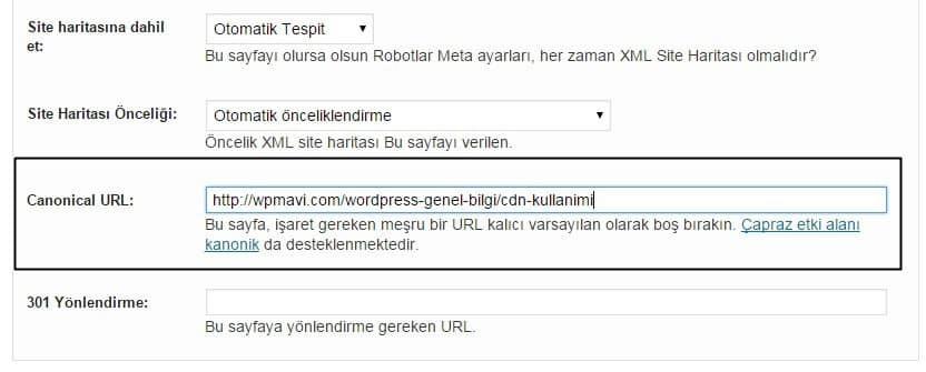 Wordpress Canonical Etiketi Kullanımı