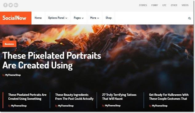 SEO Uyumlu WordPress Temaları - Social Now
