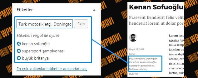 WordPress Yazı Editörü Etiketler Alanı