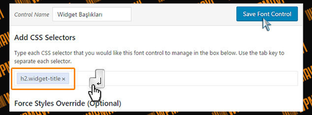 WordPress Yazı Tipi Değiştirme - Font Kontrol Kaydetme