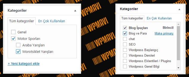 WordPress Yazı Editörü Kategoriler Alanı