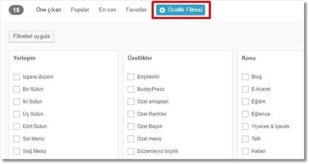 Wordpress Tema Kurulumu Özellik Filtresi