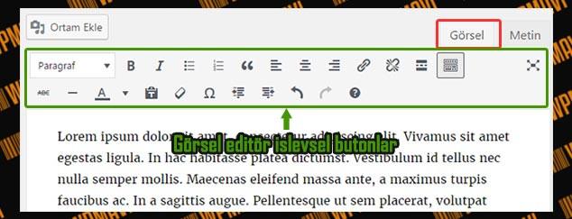 WordPress Yazı Editörü - Görsel Editör