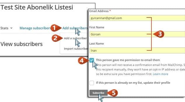 Wordpress Email Aboneliği Abonelik Listesi Yönetme / 2