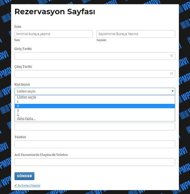 WordPress Form Hazırlama - Yayınlanmış Form Görünümü