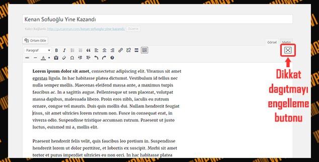 WordPress Yazı Ekleme - Dikkat Modu