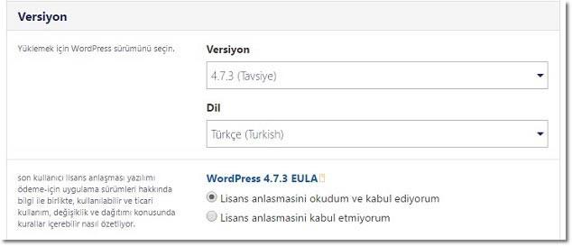 Haber Sitesi Kurmak İçin WordPress Versiyon Seçimi