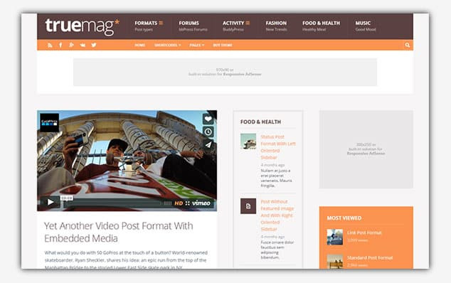 TrueMag - (WordPress Forum Teması)