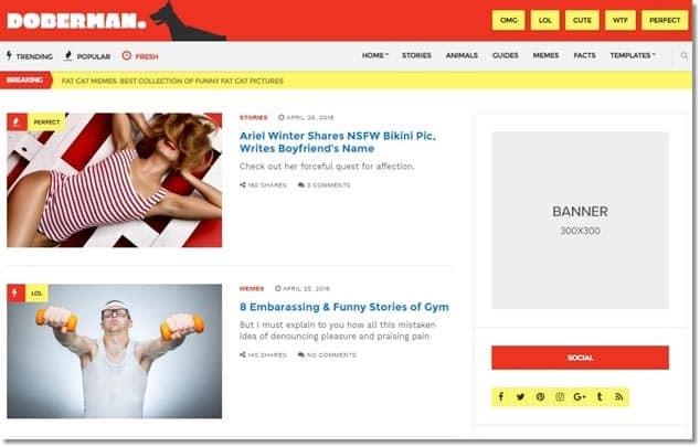 Wordpress sosyal medya teması - doberman