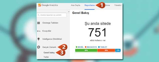 WordPress Google Analytics Kodu Ekleme - 3