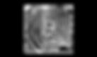ZEBR_icon_Hvit.png