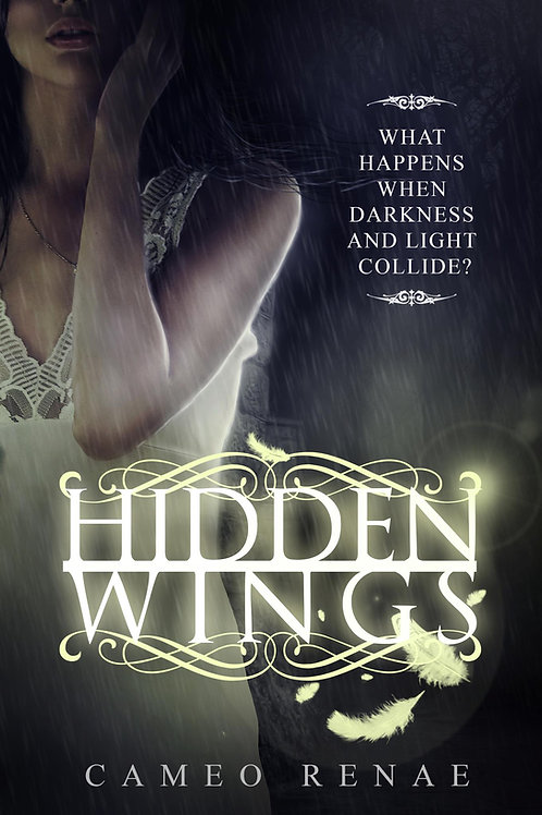 Hidden Wings (Book One)