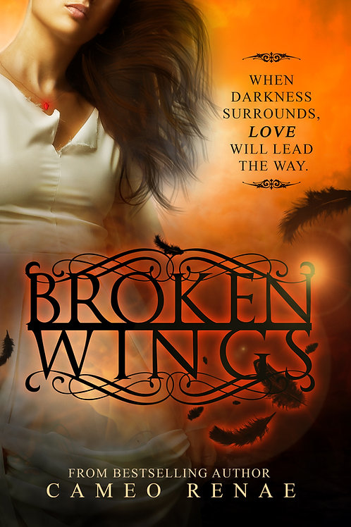 Broken Wings (Hidden Wings: Book Two)