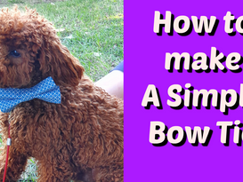 How to make a Doggy/Child's Bow Tie