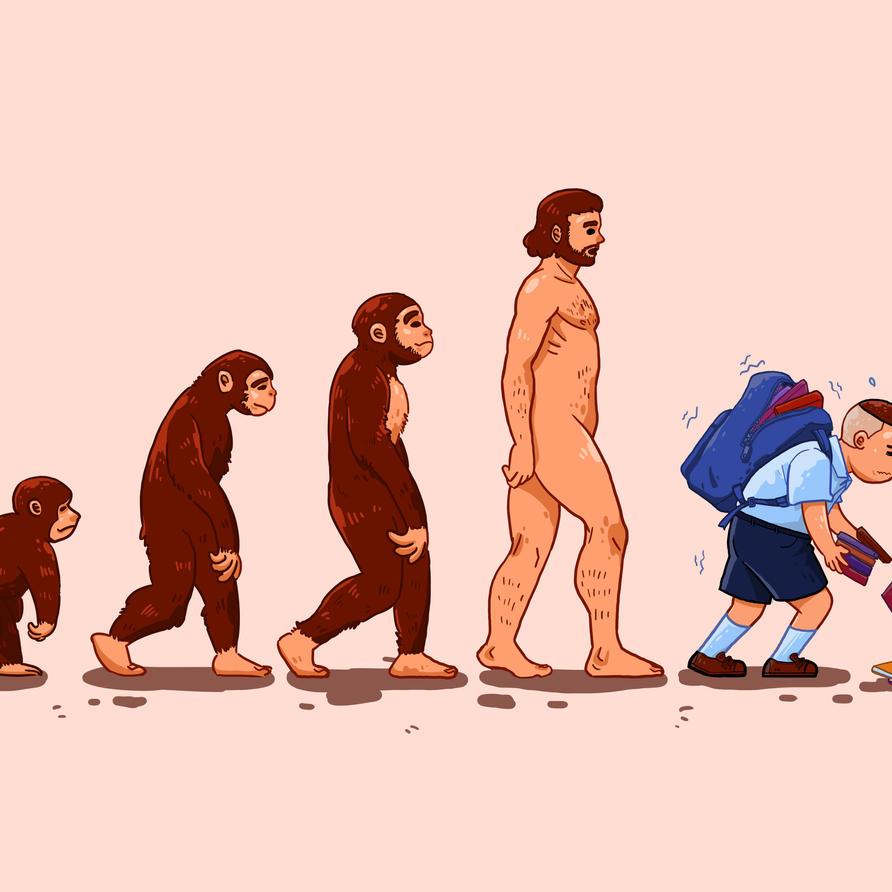 วิวัฒนาการ (Evolution)