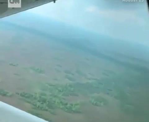 CNN Footage: Amazon