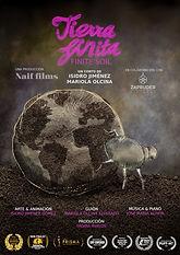 10) Tierra finita poster.jpg