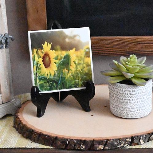 Field of Sunflowers Coaster