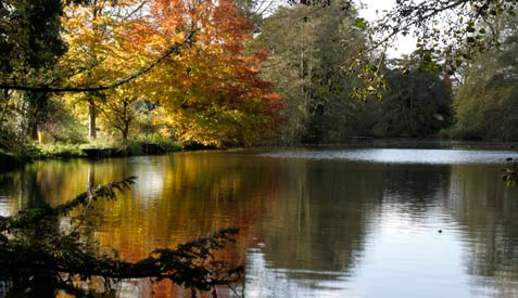 The lake at Purton House