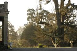 Portico and Cedar