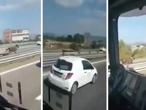 (ВИДЕО) Незауздан КОЊ трча во спротивна насока на автопатот Скопје – Тетово: Полициските возила ...