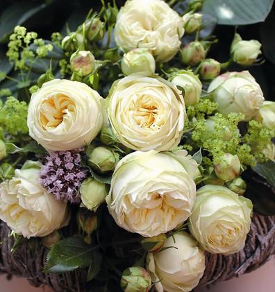 Rosa Wedding Piano3.jpg