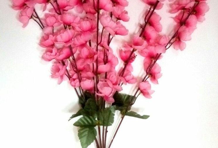 Сакура Оливия розовая