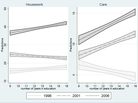Education and domestic work contributions between 1996 and 2006 in Japan
