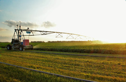 Soybean Irrigation | Sims Farms