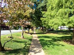Sidewalk at The Green