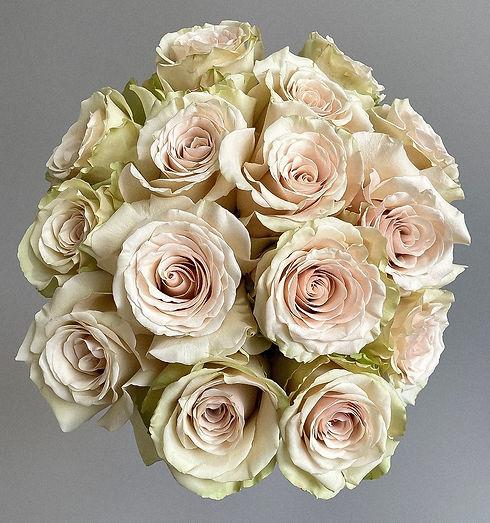 White and cream 'Pompeii' rose bunch