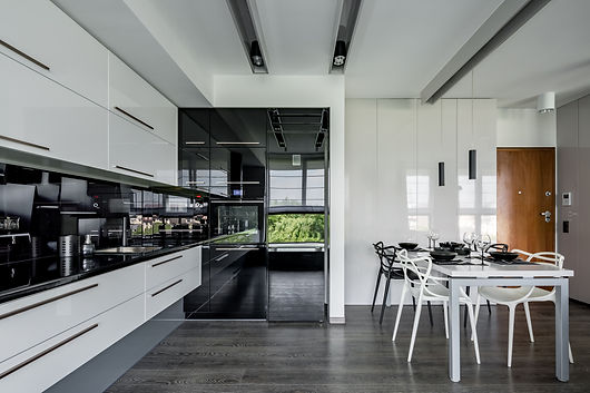 Contemporary kitchen in black and white