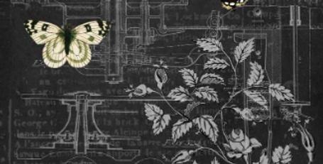 Mechanical Butterflies 2