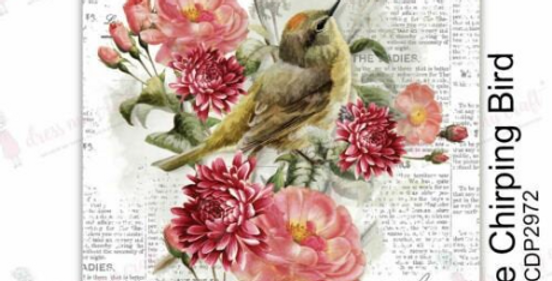Reverse Chirping Bird