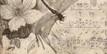 Musical Dragonflies