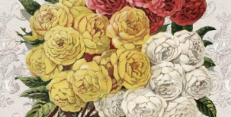 Roses Catalog